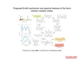 R Teufel  et al.  Nature  000 ,  1 - 5  (2013)  doi:10.1038/nature12643