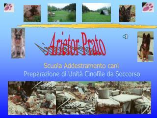 Arietor Prato
