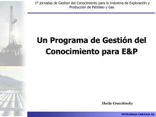 Un Programa de Gesti�n del Conocimiento para E&P