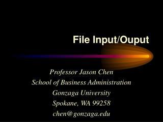 File Input/Ouput