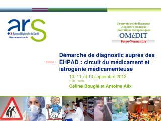 Démarche de diagnostic auprès des EHPAD : circuit du médicament et iatrogénie médicamenteuse