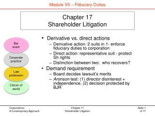 Chapter 17 Shareholder Litigation