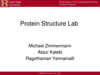 Protein Structure Lab