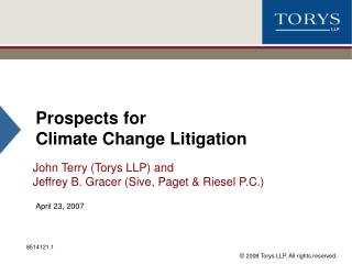 Prospects for  Climate Change Litigation