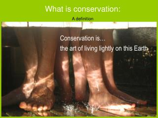 Conservation is… the art of living lightly on this Earth