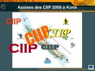 Assises des CIIP 2008 à Koné