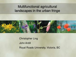 Multifunctional agricultural landscapes in the urban fringe