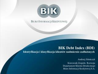BIK  Debt Index  (BDI) Identyfikacja i klasyfikacja klientów nadmiernie zadłużonych