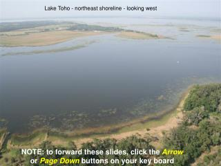 Lake Toho - northeast shoreline - looking west