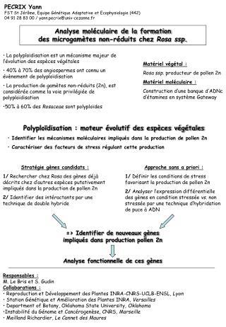 Analyse moléculaire de la formation des microgamètes non-réduits chez  Rosa ssp.
