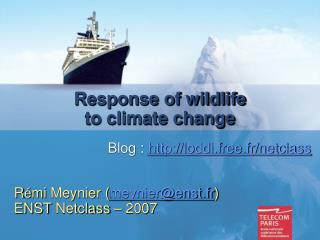 Response of wildlife to climate change