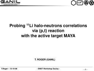Probing  11 Li halo-neutrons correlations via (p,t) reaction with the active target MAYA