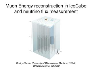 Muon Energy reconstruction in IceCube and neutrino flux measurement