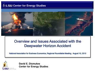 Center for Energy Studies