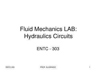 Fluid Mechanics LAB: Hydraulics Circuits