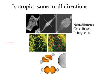 Isotropic: same in all directions