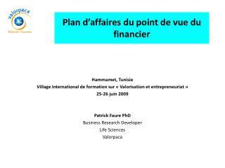 Plan d'affaires du point de vue du financier