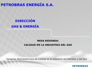 PETROBRAS ENERGÍA S.A.