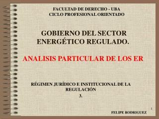 GOBIERNO DEL SECTOR ENERGÉTICO REGULADO. ANALISIS PARTICULAR DE LOS ER