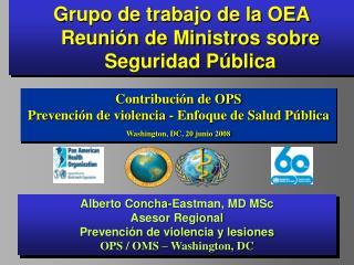 Grupo de trabajo de la OEA  Reunión de Ministros sobre Seguridad Pública