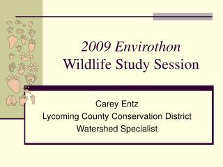 2009 Envirothon Wildlife Study Session