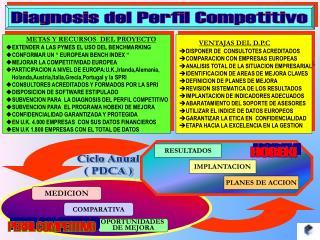 Diagnosis del Perfil Competitivo