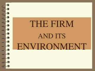 THE FIRM  AND ITS  ENVIRONMENT