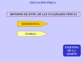EDUCACI�N F�SICA