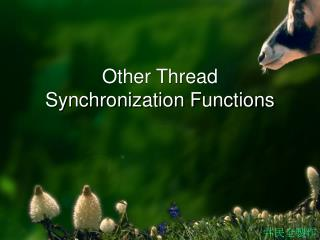 Other Thread Synchronization Functions