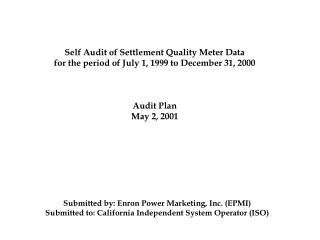 Self Audit of Settlement Quality Meter Data for the period of July 1, 1999 to December 31, 2000