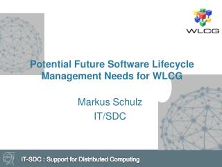 Potential Future Software Lifecycle Management Needs for WLCG