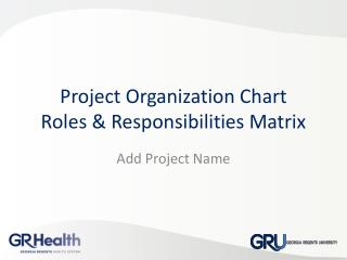 Project Organization Chart Roles & Responsibilities Matrix