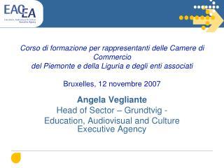 Angela Vegliante Head of Sector – Grundtvig - Education, Audiovisual and Culture  Executive Agency