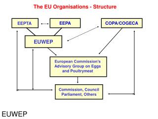 The EU Organisations - Structure