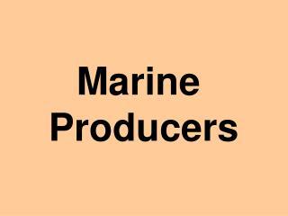 Marine  Producers