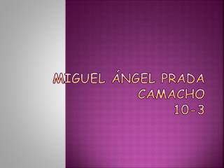 Miguel ángel Prada Camacho 10-3