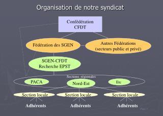 Organisation de notre syndicat