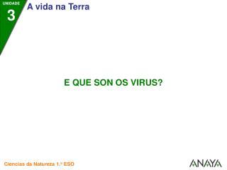 • Os virus son uns  seres diminutos,  máis pequenos que calquera ser vivo coñecido.