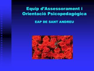 Equip d'Assessorament i Orientació Psicopedagògica EAP DE SANT ANDREU