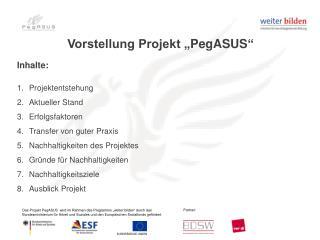 "Vorstellung Projekt "" PegASUS """