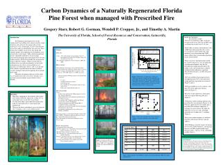 Carbon Dynamics of a Naturally Regenerated Florida Pine Forest when managed with Prescribed Fire