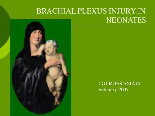 BRACHIAL PLEXUS INJURY IN 				    		    NEONATES		 						LOURDES ASIAIN 						February 2005