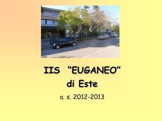 """IIS  """"EUGANEO"""" di Este a. s. 2012-2013"""