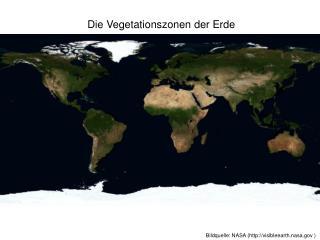 Die Vegetationszonen der Erde