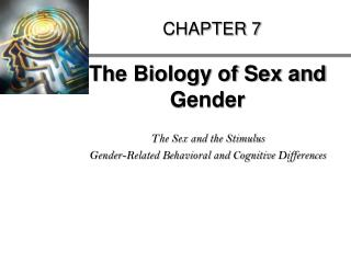 The Biology of Sex and Gender  The Sex and the Stimulus Gender-Related Behavioral and Cognitive Differences