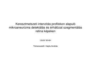 Lázár  István Témavezető: Hajdu András