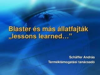 """Blaster  és más állatfajták """"lessons learned…"""""""
