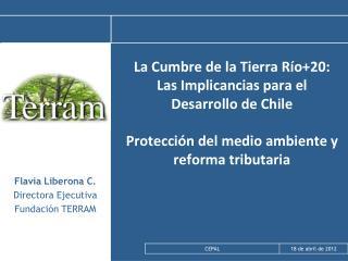 Flavia Liberona C.  Directora Ejecutiva Fundación TERRAM