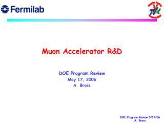 Muon Accelerator R&D