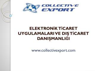 ELEKTRONİK TİCARET UYGULAMALARI VE DIŞ TİCARET DANIŞMANLIĞI  collectivexport